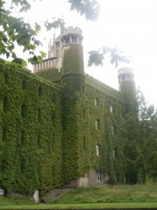 Cambridge had a vertical garden long before Tarragona!!!